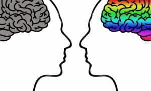 diferencia entre el cerebro masculino y femenino