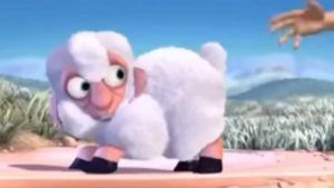 oveja pelada